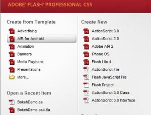 Adobe Flash start screen